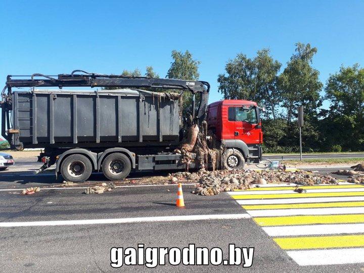 ДТП под Скиделем: дорогу засыпало субпродуктами и тушами животных