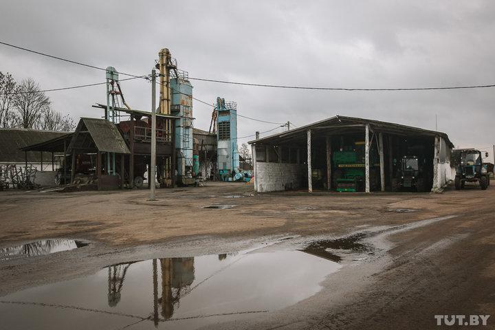 В Беларуси директора колхозов смогут получить 25% акций