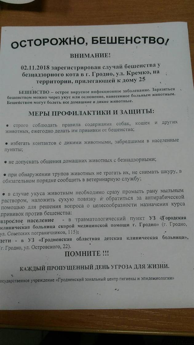 В Гродно зарегистрирован третий случай бешенства за месяц