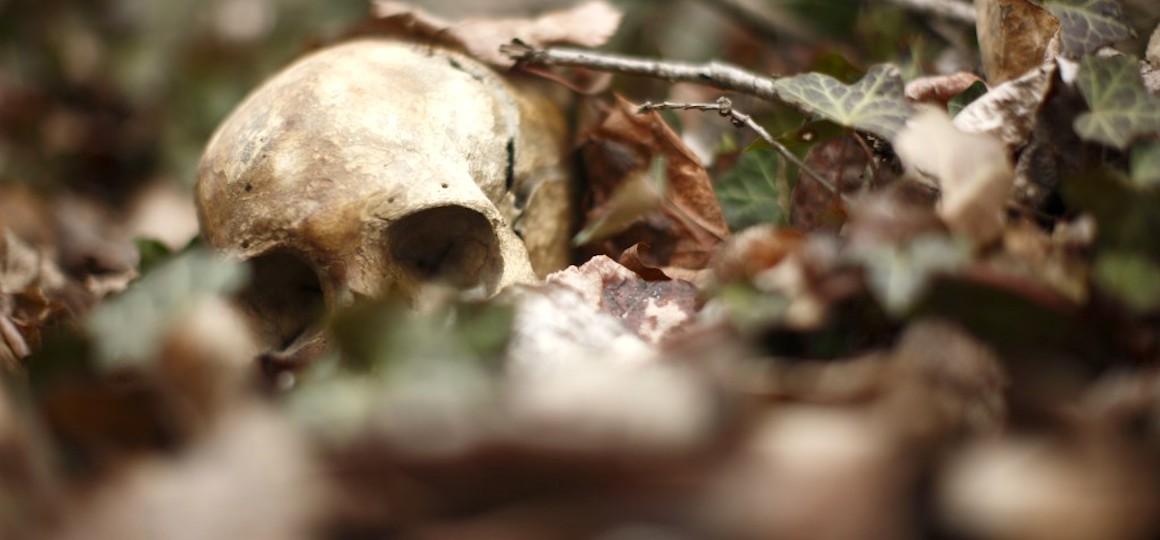 В Лидском районе найдены останки пропавшего 10 лет назад мужчины