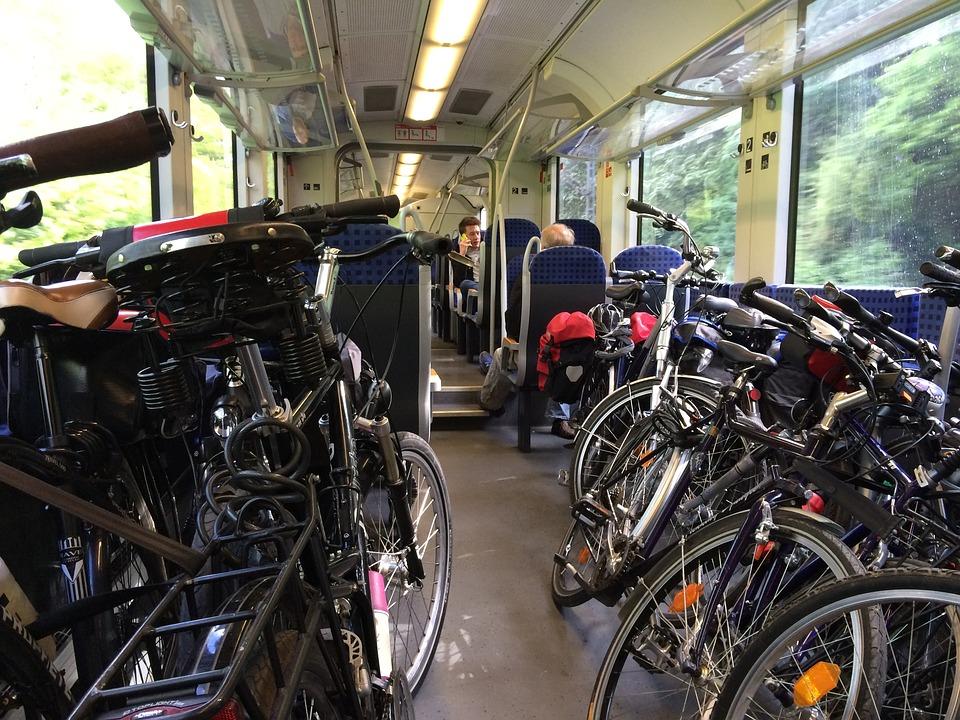 В Беларуси изменяются правила провоза домашних животных и велосипедов в поездах