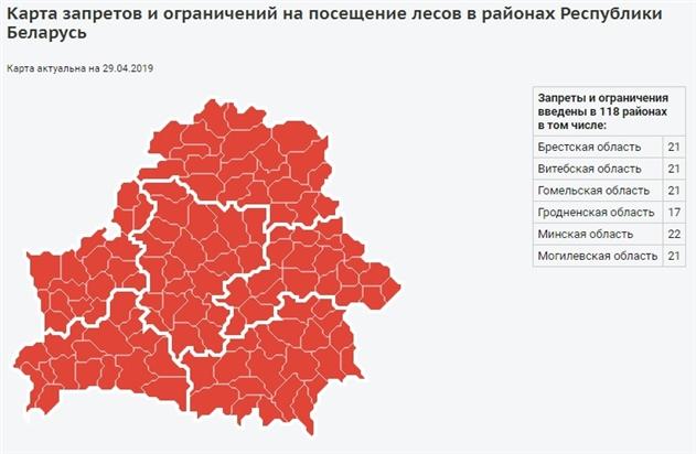 В Беларуси продолжает действовать запрет на посещение лесов