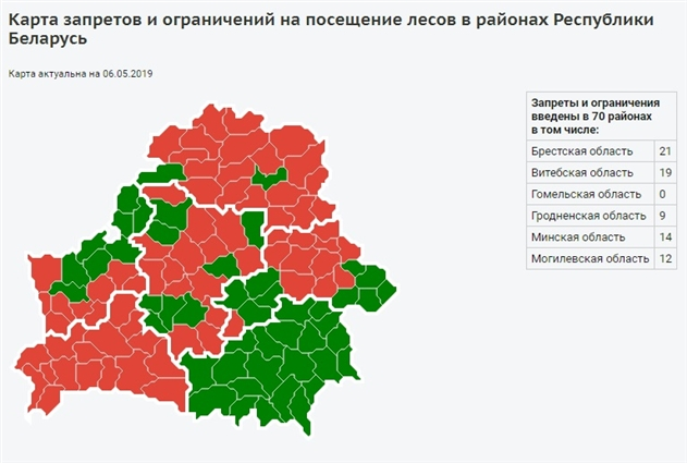 В 48 районах Беларуси снят запрет на посещение лесов