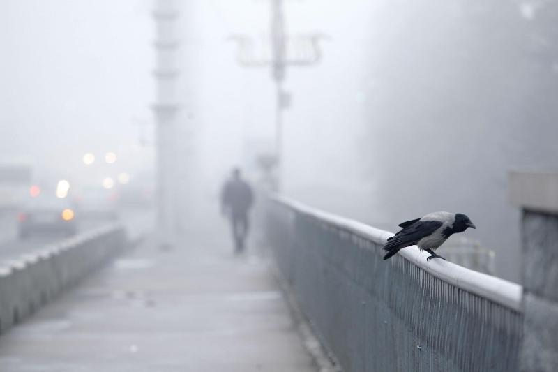 В Беларуси из-за тумана объявлен оранжевый уровень опасности