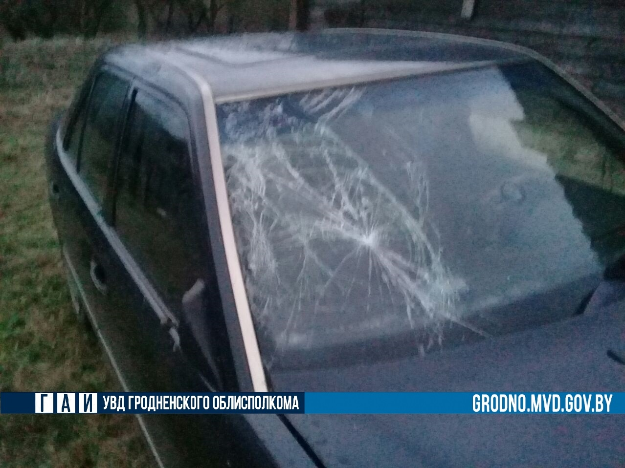 В Лидском районе установили личность водителя, совершившего смертельный наезд