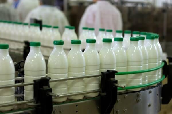 «Лидский молочно-консервный комбинат» объединяется с молочной компанией из Новогрудка