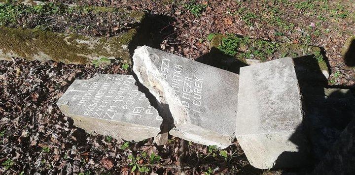В Лиде нашли разгромивших кладбище вандалов - ими оказались дети