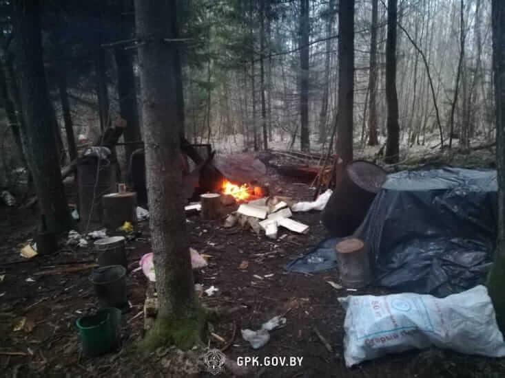 В погранполосе лидские пограничники обнаружили самогонщика и тонну браги