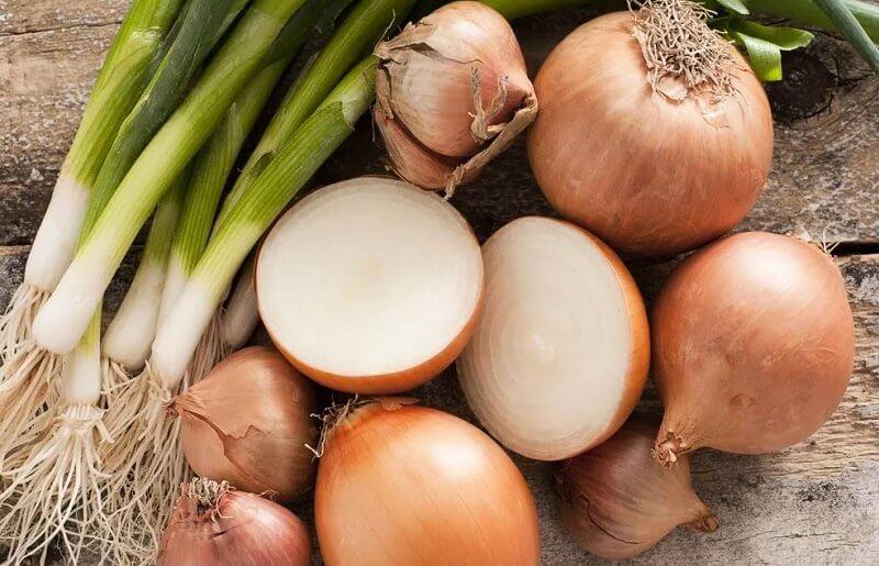 Немец будет выращивать в Лидском районе лук