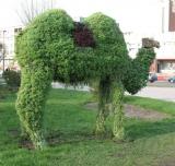Лидский «верблюд»