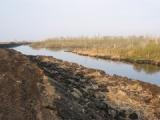 В Лидском районе продолжат восстановление торфяников